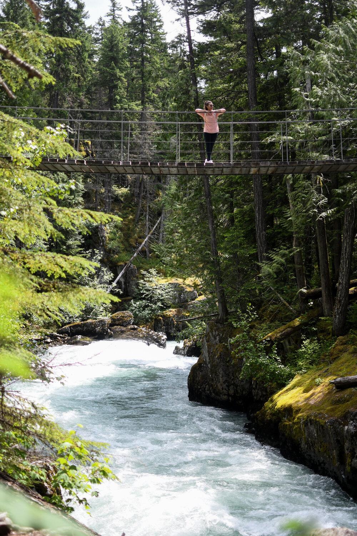 Whistler Train Wreck Suspension Bridge