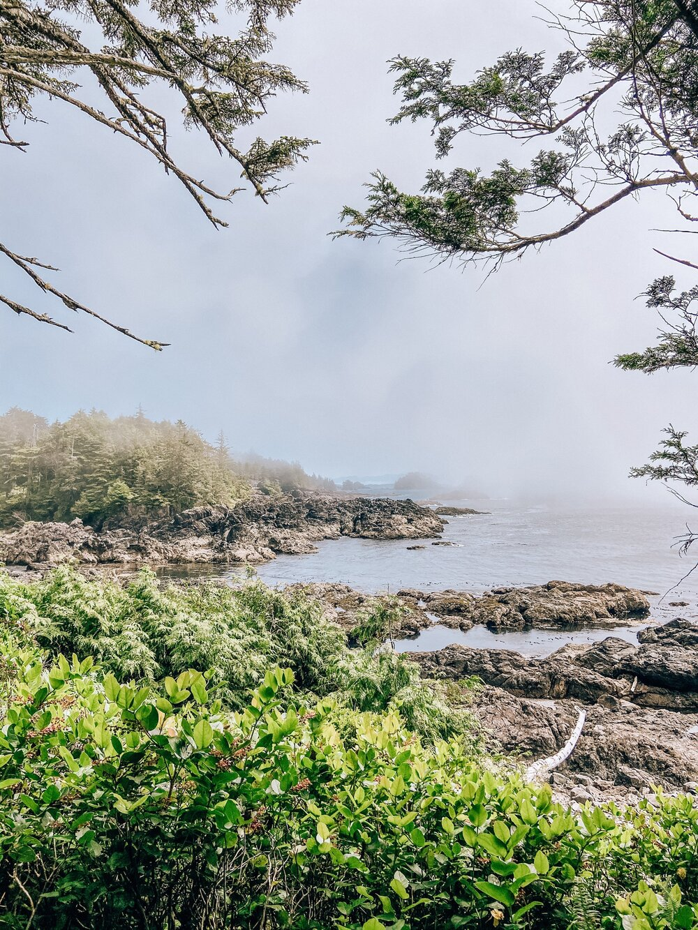 Wild Pacific Trail hike in Ucluelet British Columbia