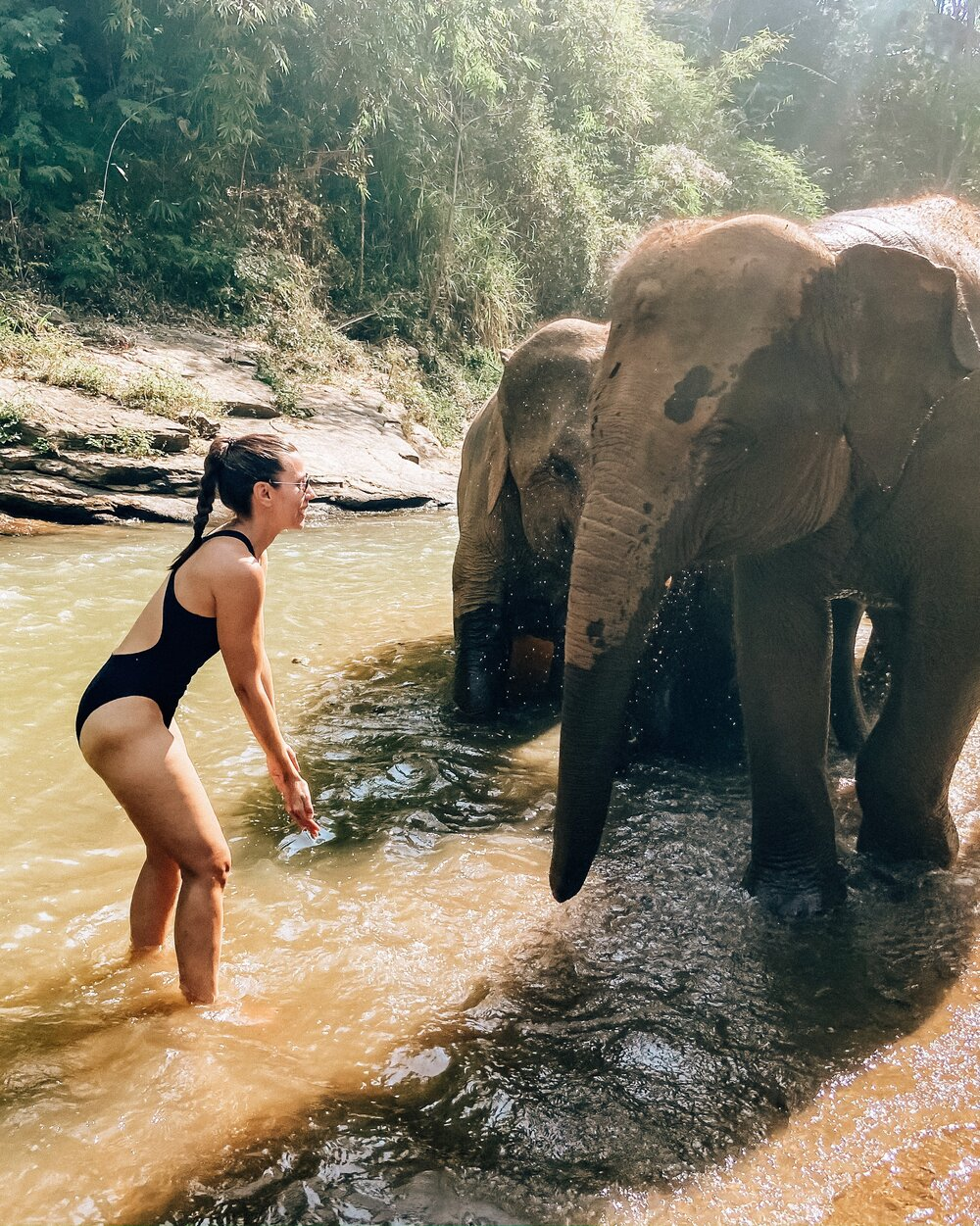 Swimming with elephants at ethical elephant sanctuary in Thailand