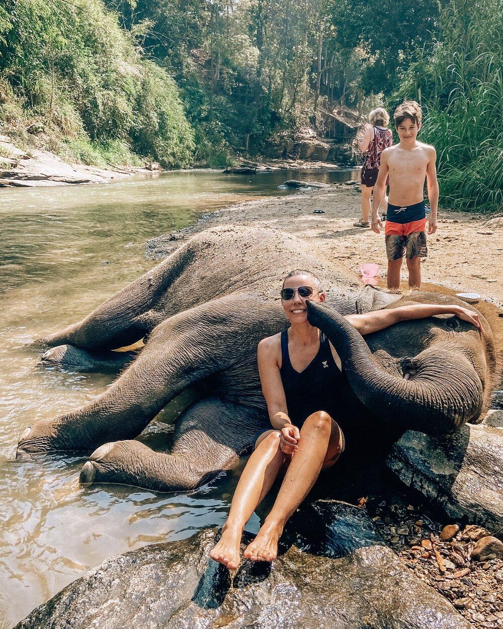 Bathing elephants at Golden Triangle elephant sanctuary