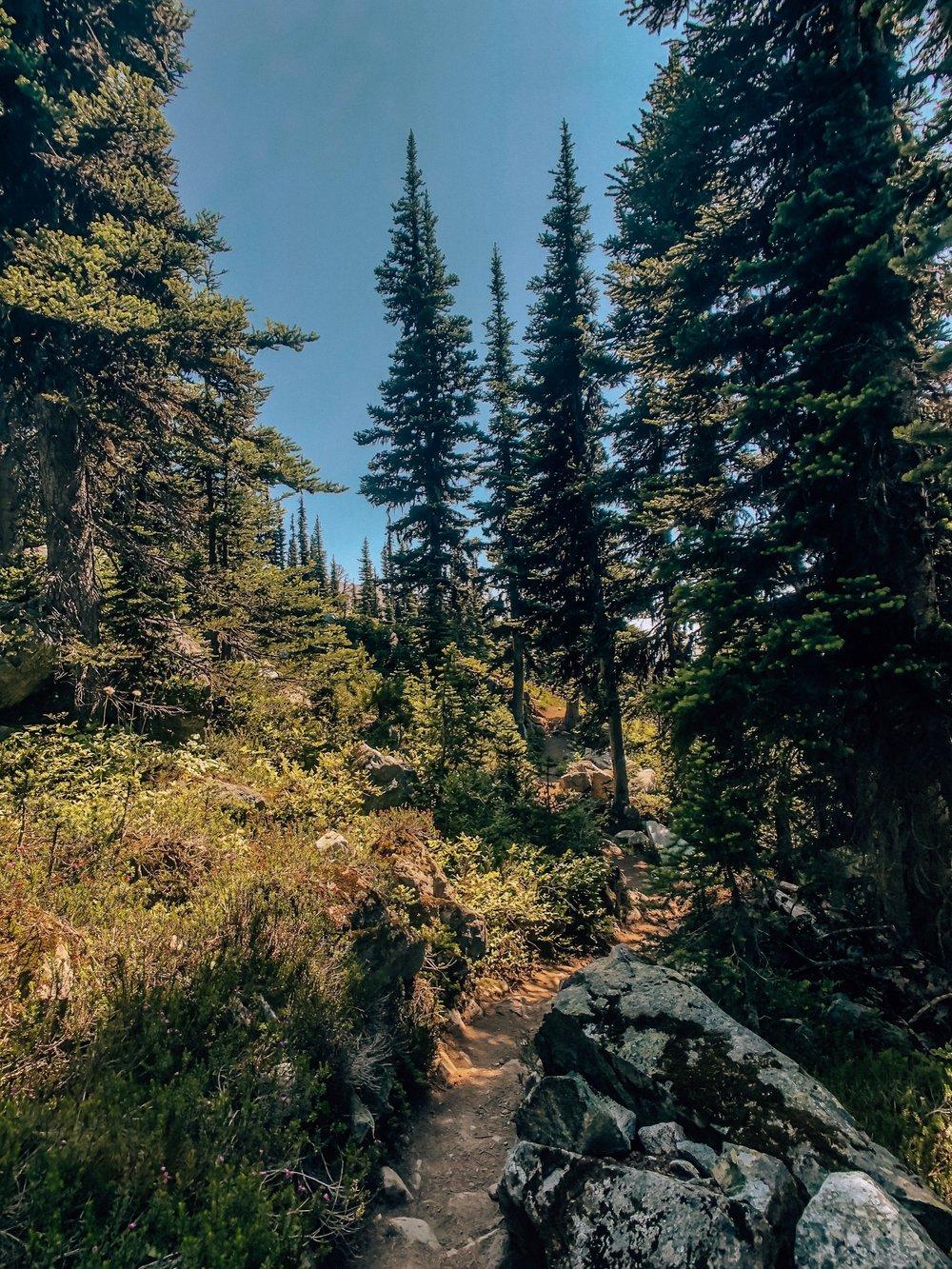 Autumn mountain alpine hikes in Canada
