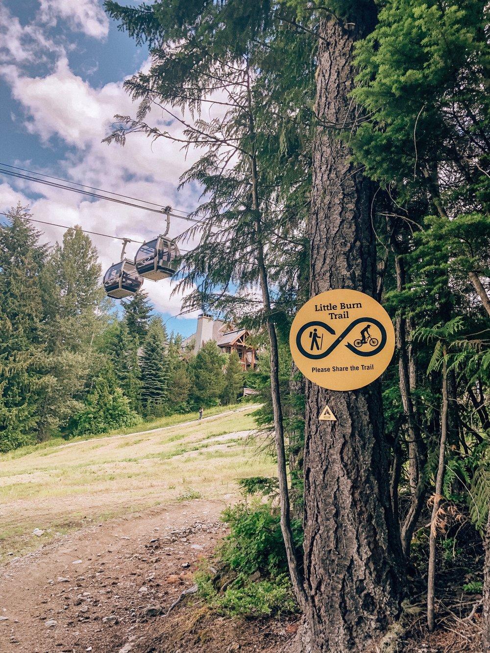 Little Burn Trail on Ascent Trail Hike Whistler Blackcomb