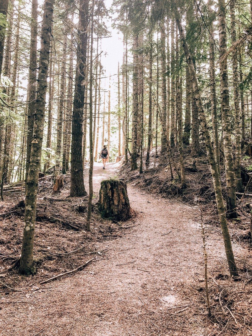Hiking Little Burn on Ascent Trail Whistler BC