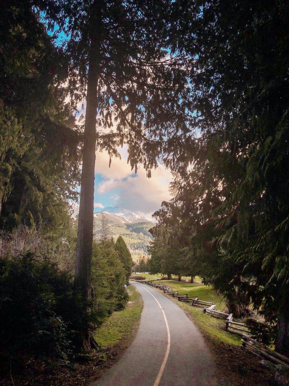 Whistler Valley Trail biking, running, walking trails