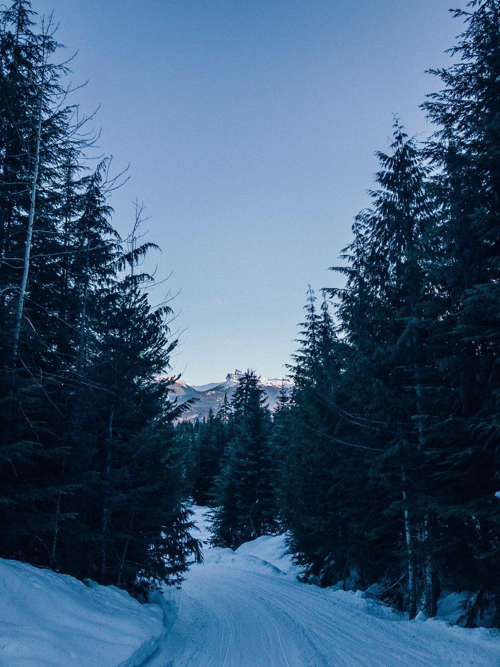 Blacktusk mountain views while snowshoeing