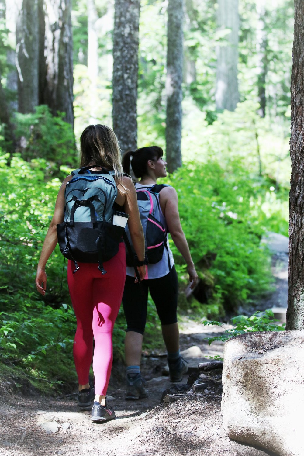Forest trail to Rainbow Lake Whistler