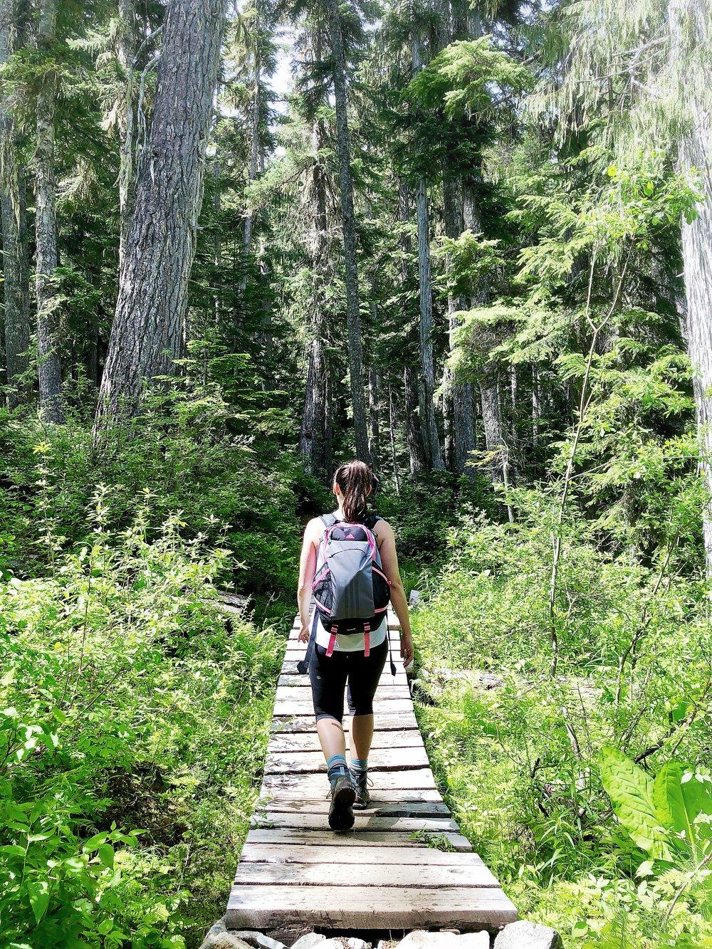 Board walk on Rainbow Lake Hike Trail