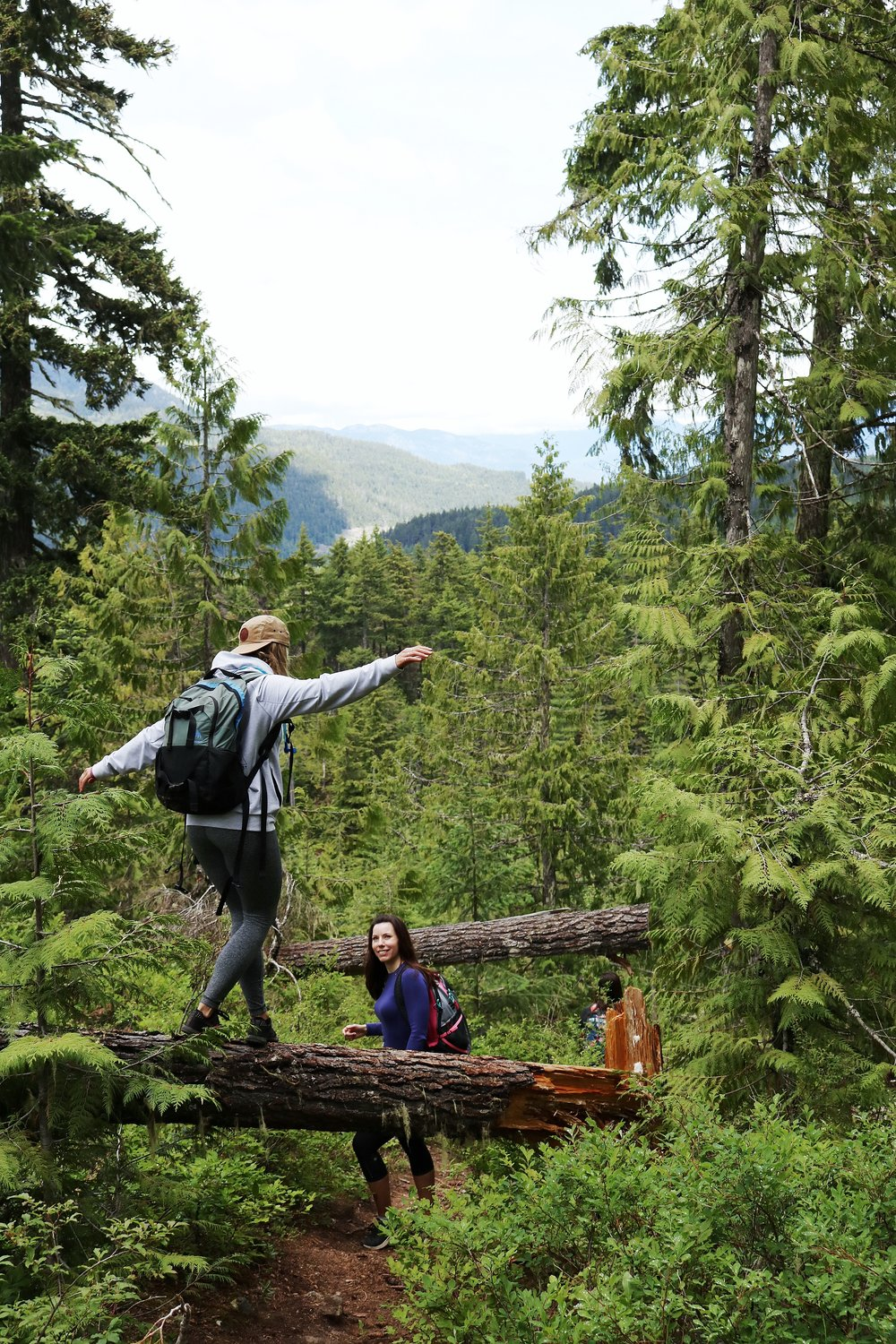 Fun hikes in Whistler Canada - Crater Rim Trail hike