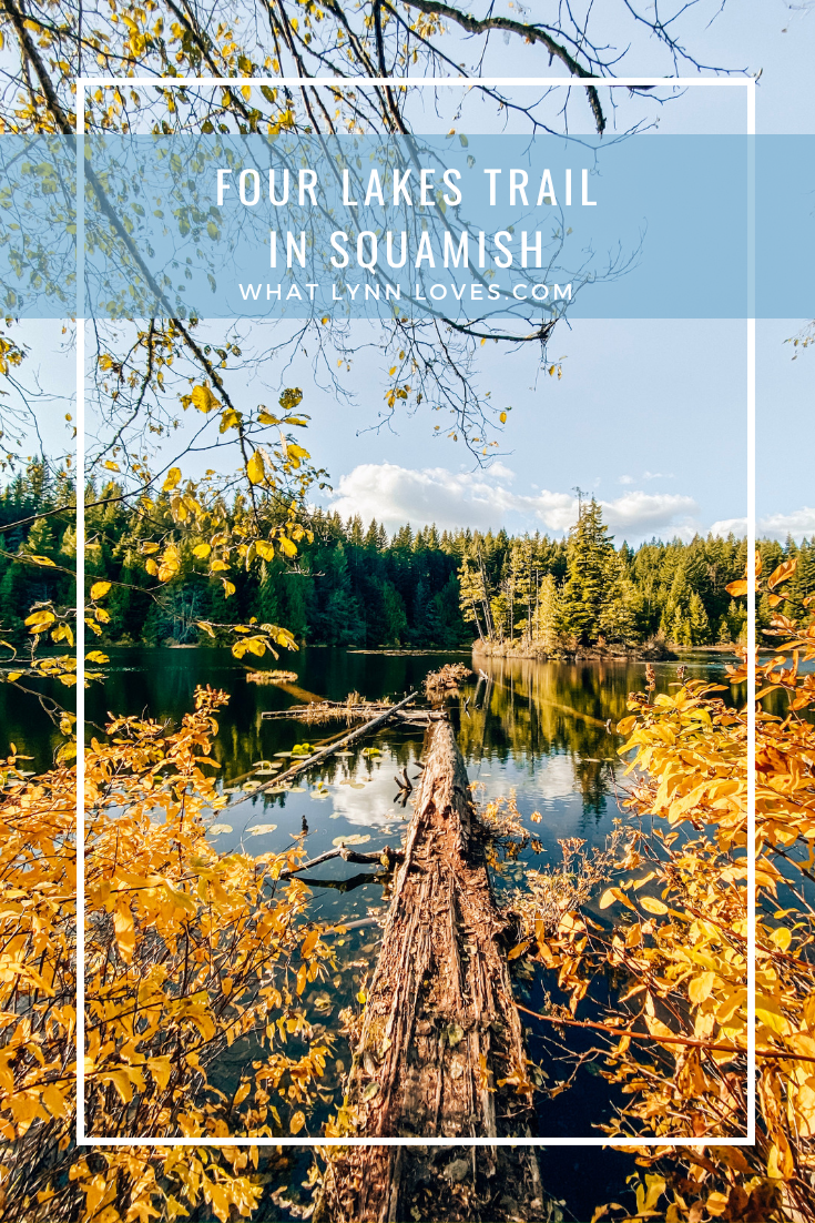 Best Beginner Hike in Squamish Four Lakes Trail at Alice Lake Park